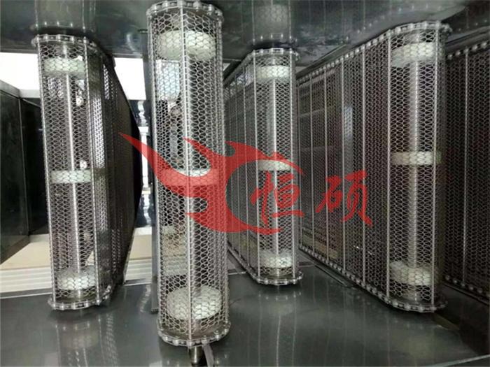 北京网带式输送机